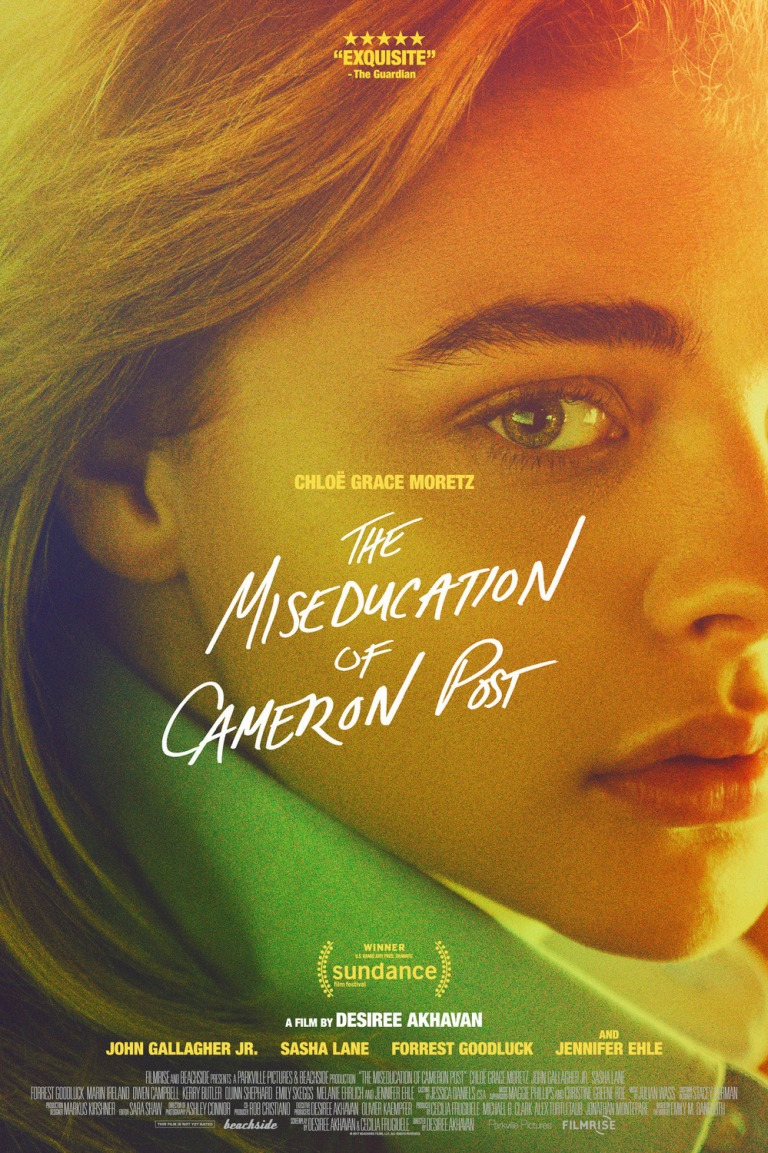 miseducation_of_cameron_post_ver2_xlg